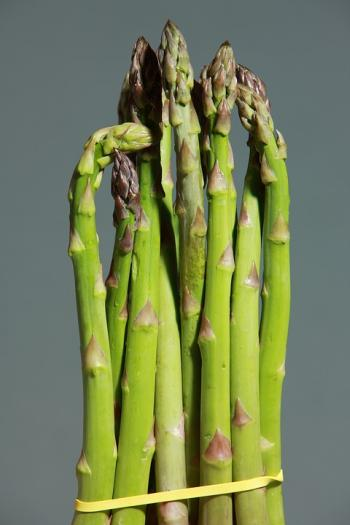 asparagus on fasting diet days