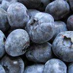Healthy Dessert – Blueberry and Lemon Yogurt Cake